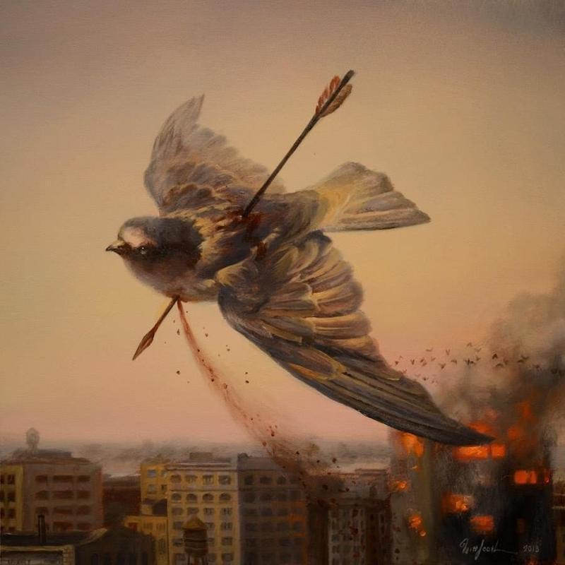 можно подстреленная птица картинки вам
