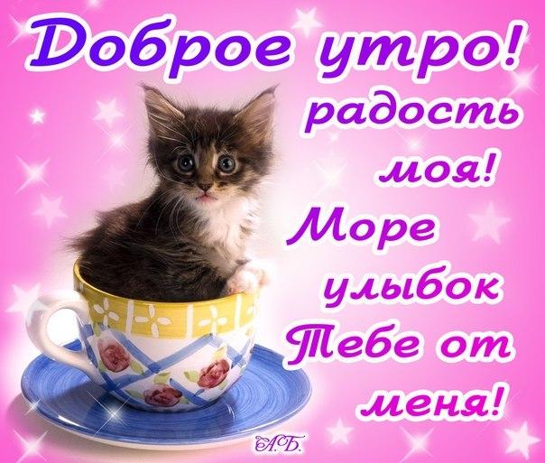 https://otvet.imgsmail.ru/download/210538254_f5d0af6621b70090b6d536f5b0ca1d64_800.jpg