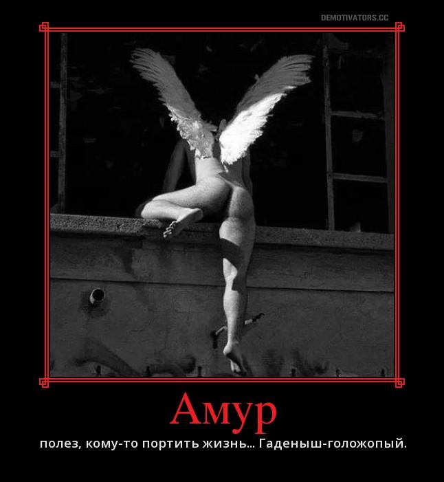 картинки мужик ангел лезет в окно родителей