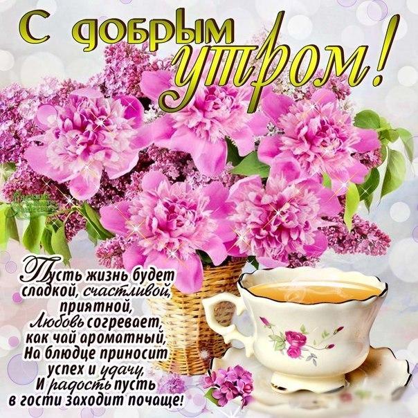https://otvet.imgsmail.ru/download/214679166_bc2720864605c7f27ef14d425bc01f8d_800.jpg