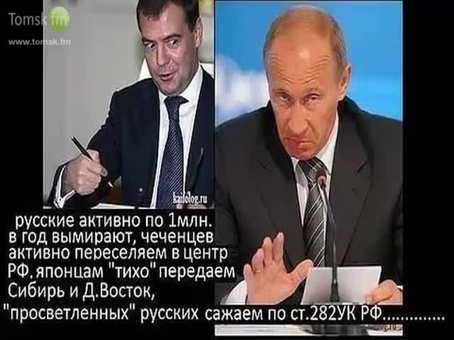 же, при путине вымерших русские движения, тепло