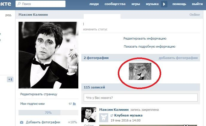 Маразмы из Украины 60 фото  kaifologru