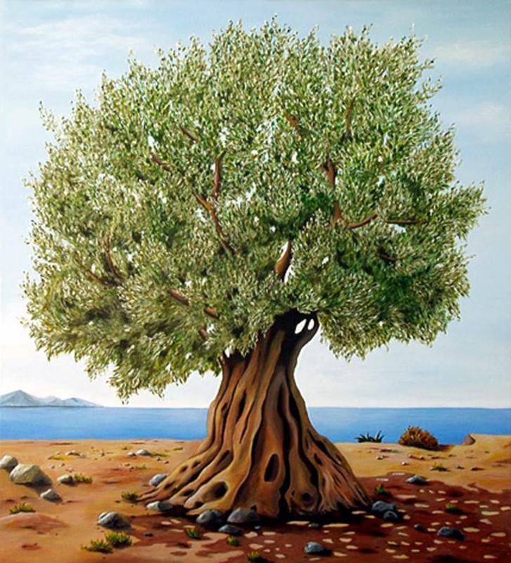 что олива дерево фото рисунок картинкам это сложно