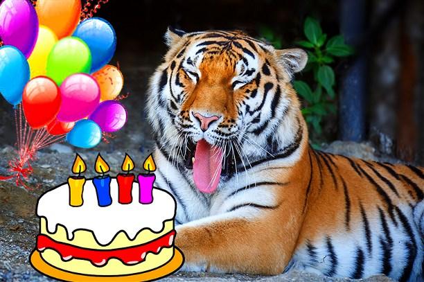 Открыткой рождеством, поздравление с днем тигра открытка