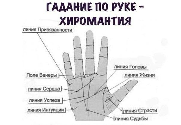 предлагаем Вам по какой руке смотрят линию жизни у мужчин синтетических волокон