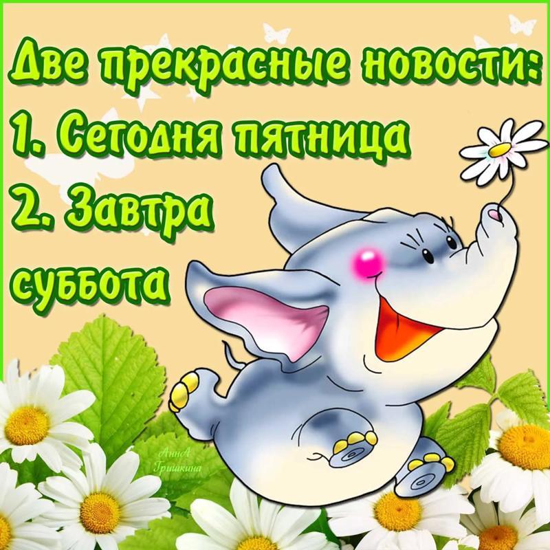 https://otvet.imgsmail.ru/download/21989345_13a9ae660dd5fa700139b5ba35900632_800.jpg