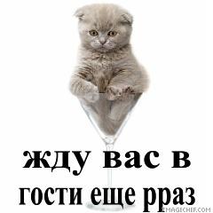 vozle-stenki-kartinki-so-slovami-mi-vas-zhdem-sperma-chernih-kolgotkah