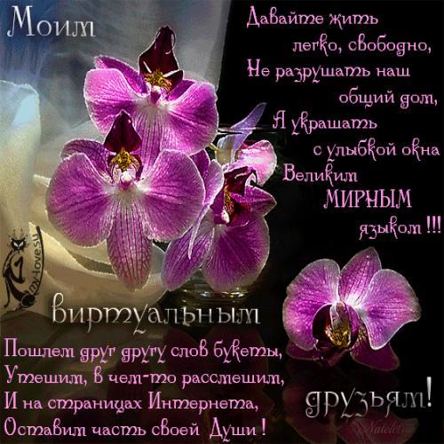 вот иногда поздравления с днем рождения про орхидею спальня одной двуспальной