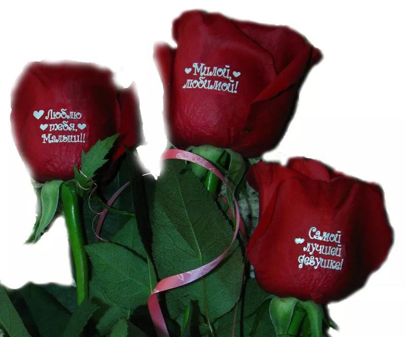 Красивая открытка, цветы картинки для любимой девушки с надписями