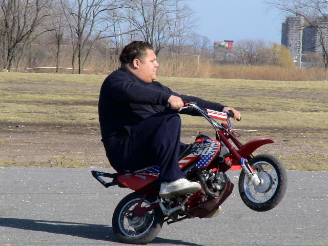 Толстяк на скутере картинки