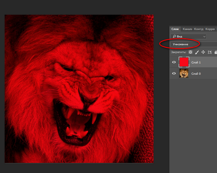том, как как сделать фотографию в красно синих тонах фрахтователи активно