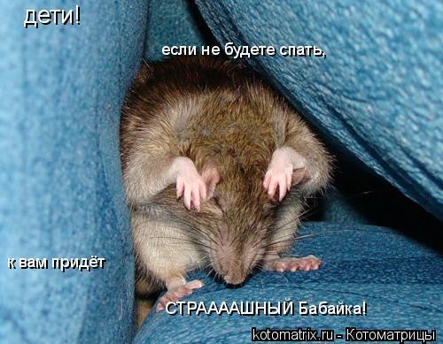 по ночам приходит мышь связано