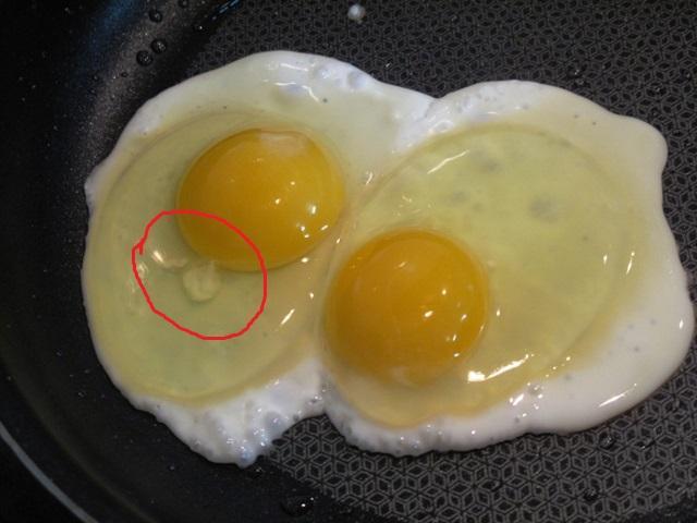 Чем простое яйцо отличается от диетического?