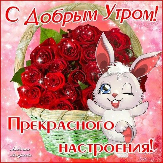 https://otvet.imgsmail.ru/download/232363970_d62255cb3a72b412771cef4e435edc7c_800.jpg
