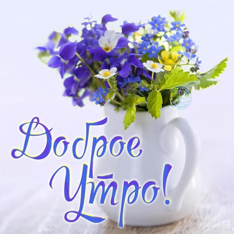 https://otvet.imgsmail.ru/download/232804836_1c02e9c4d9c165efcaaf6f67e859300e_800.jpg
