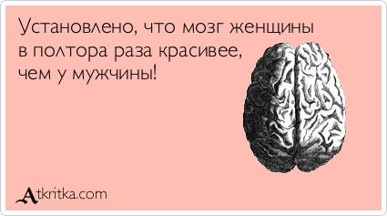 Картинка женского мозга фото 698-604