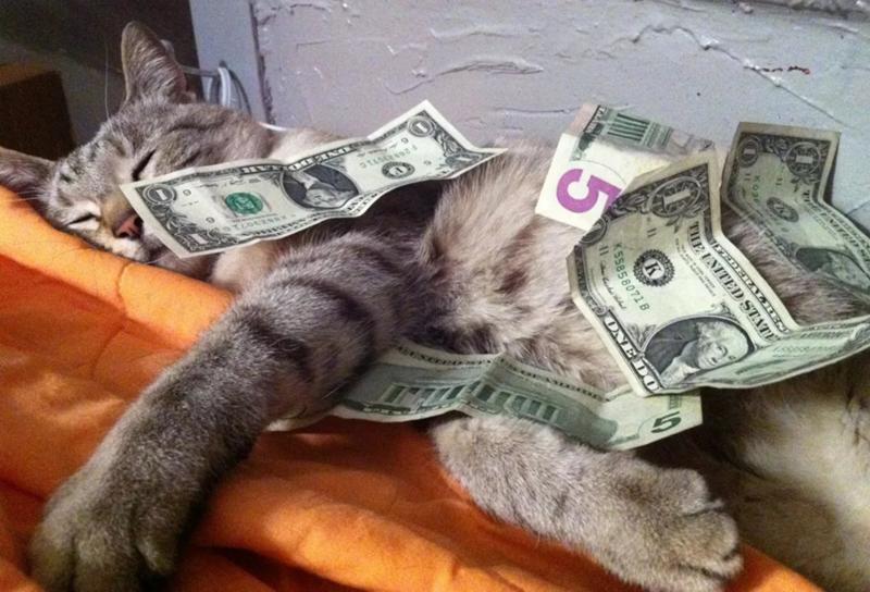 Мужчине юмором, смешные картинки деньги
