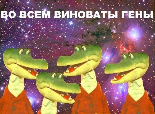 https://otvet.imgsmail.ru/download/23689f627076fbd3492bfb11fb6b9e6f_i-18911.jpg