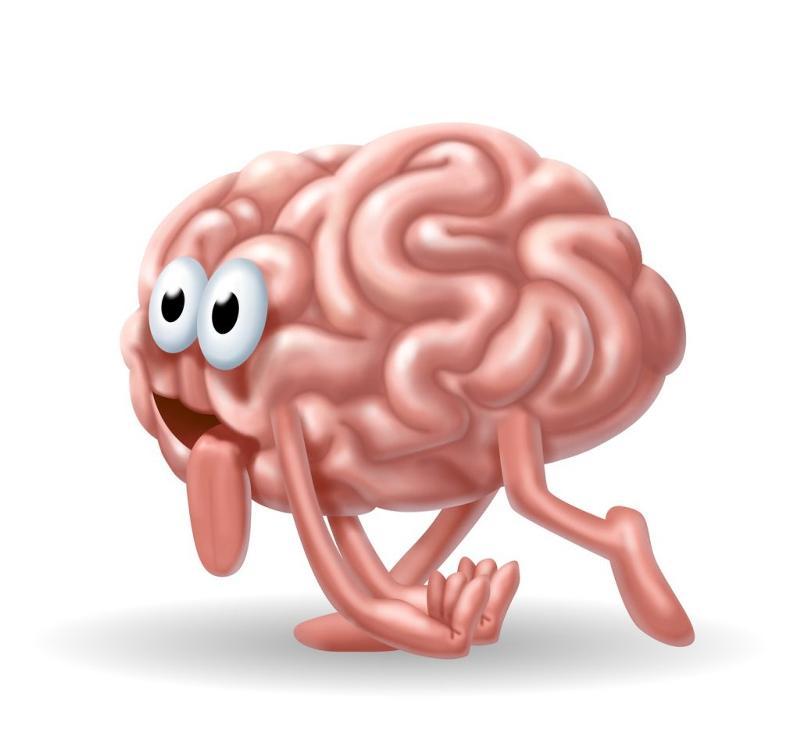 Прикольный рисунок мозга