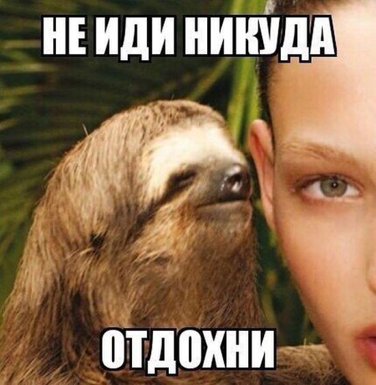 ... .Ru: Блин, как хочется послушать?! (фото: https://otvet.mail.ru/question/186357544