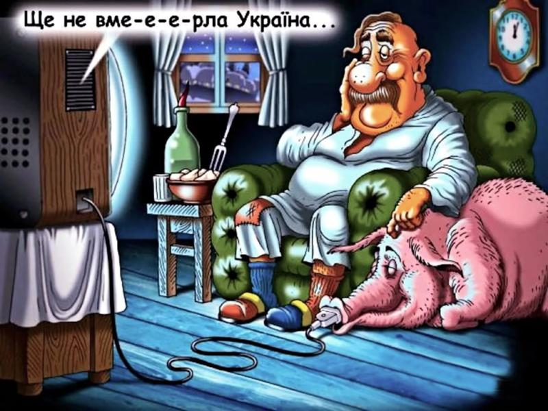 https://otvet.imgsmail.ru/download/244600948_4c5fe93e7259e8b7621d1798f0769caa_800.jpg