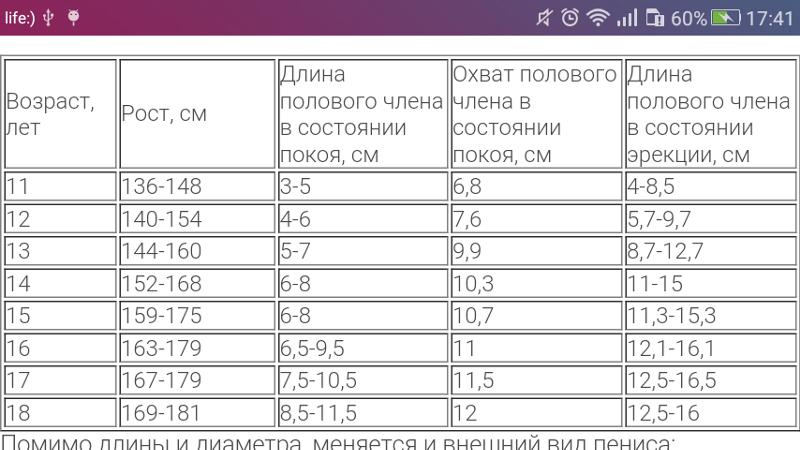 normalniy-rost-chlena-dlya-muzhchin-foto-transi