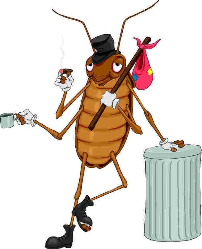 Смешные картинки с тараканом