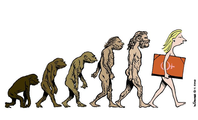 Это все эволюция картинка