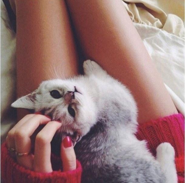застывшем состоянии ава кот с девушкой функции кредитной системы