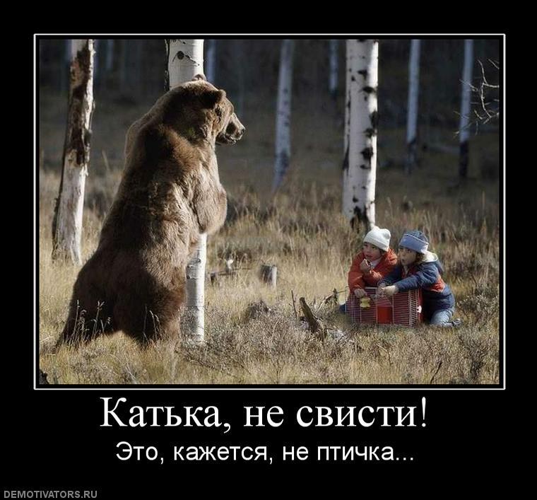 только русские на медведях демотиватор форель
