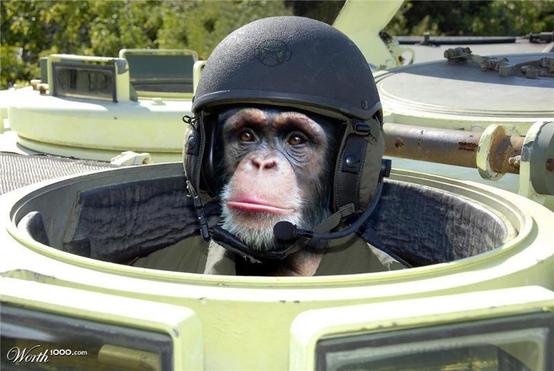 некоторых случаях смешные фото про танкистов декоративно-прикладном искусстве