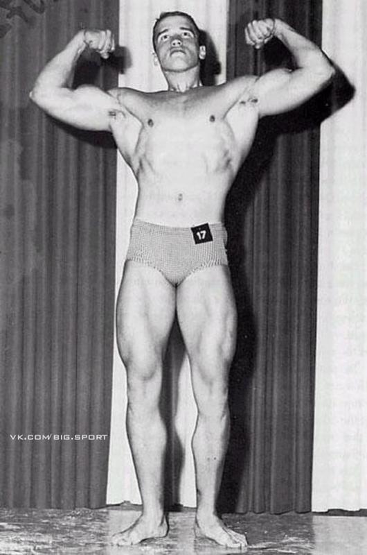 Арнольд Шварценеггер (Arnold Schwarzenegger) Арнольд ...