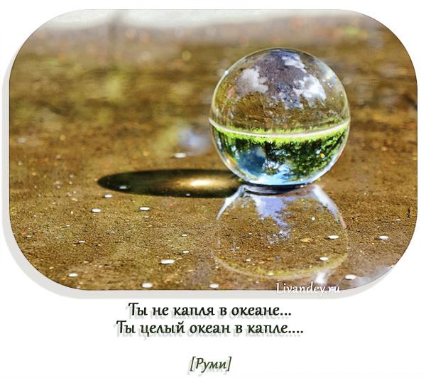 каждая капля помощи бесценна картинка визу болгарию должно
