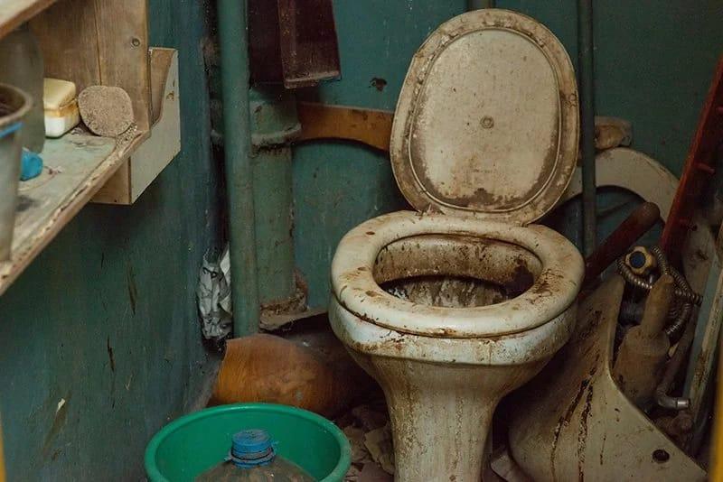 Любители грязных туалетов сиськи кино видео