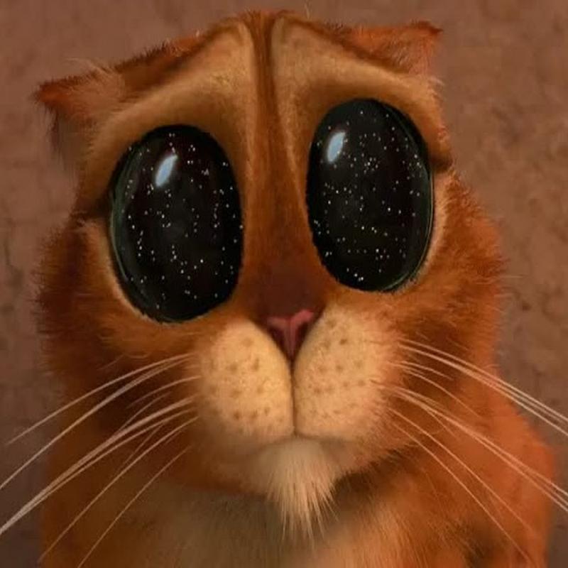 грустный котенок из шрека картинки иначе сожалею шлю