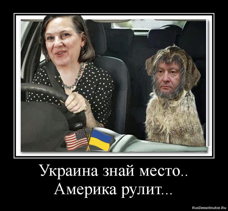 Азбука, картинки веселые украина с надписями