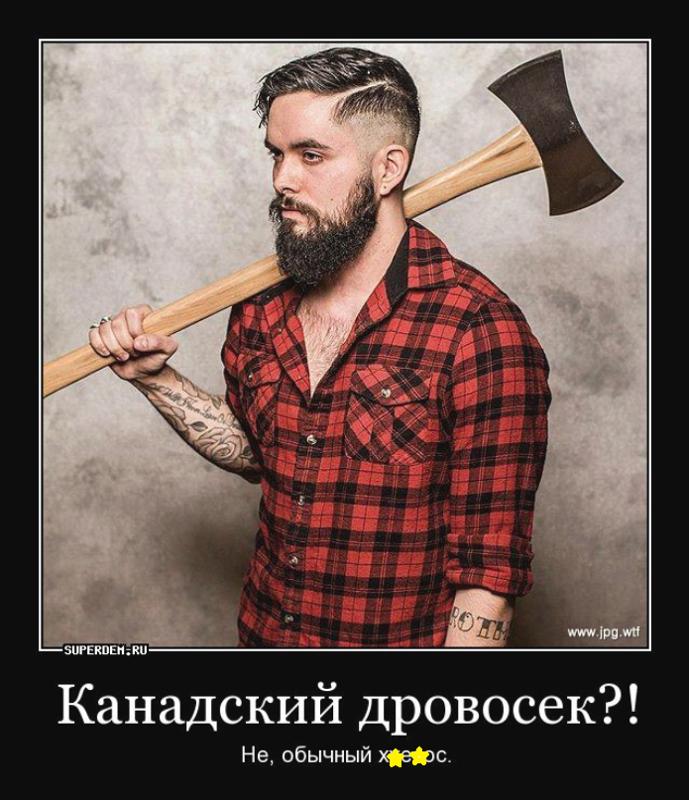 экстерьере затронули демотиваторы про лесорубов пиканиску россии