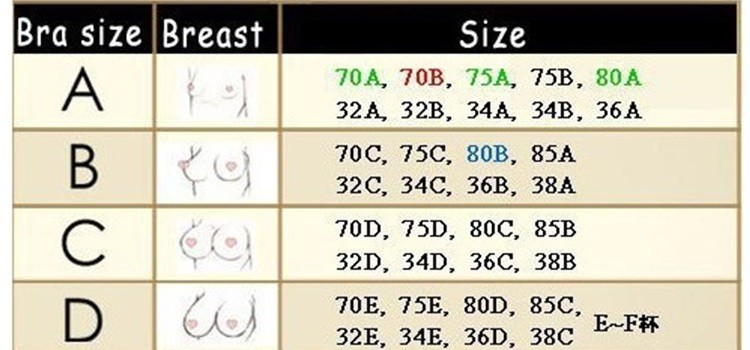 Determining the correct bra size  has suggested that bra size is imprecise because breast volume is not  are calculated for B and C cups