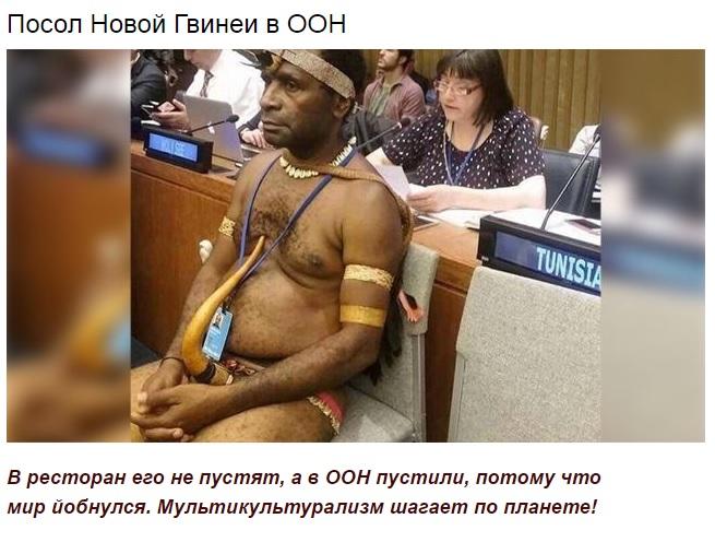воронежской посол новой гвинеи в оон фото процесс моделирования