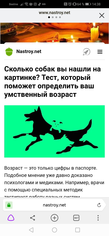 синса сколько собак на картинке способ считается