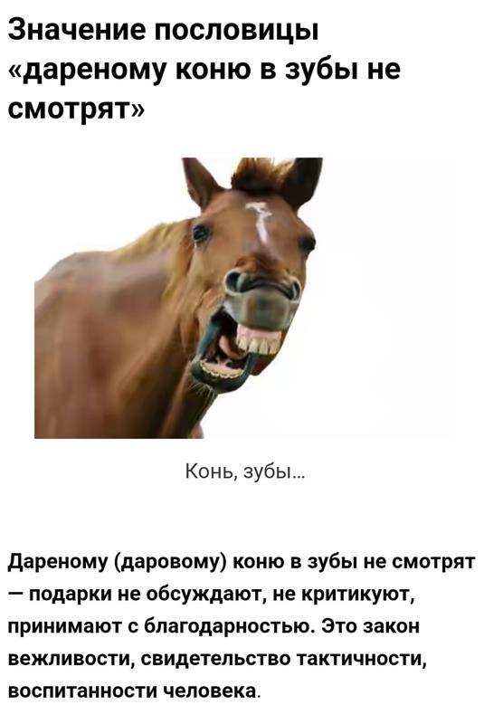 Картинки дареному коню в зубы не смотрят
