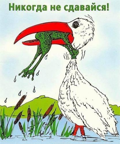 картинка с цаплей и лягушкой никогда не сдавайся