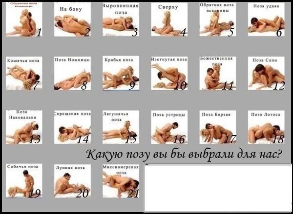 картинки позы все секса