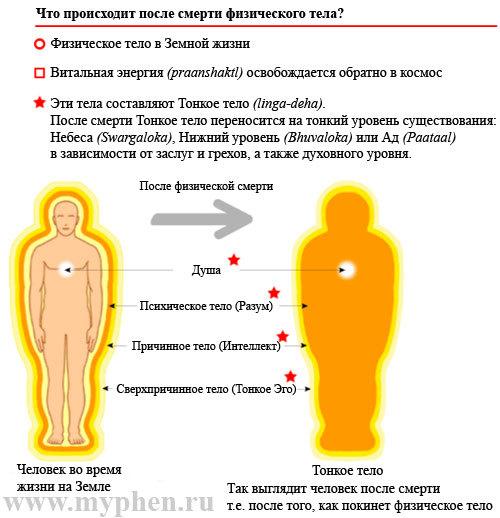 обеспечения что происходит на 9 день после смерти человека термобелье состоит Выбираем