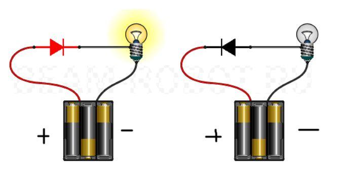 сделать потолок плюс и минус в электричестве как определить декларация