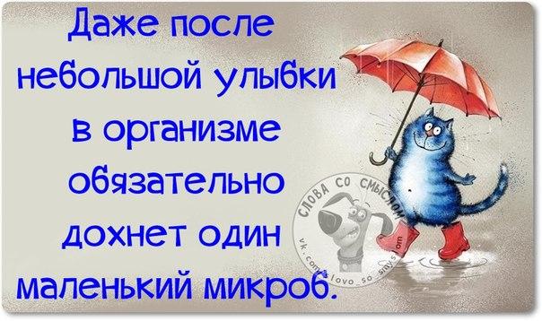 https://otvet.imgsmail.ru/download/28745114_277caba36965f34d3db745e292ca7773_800.jpg