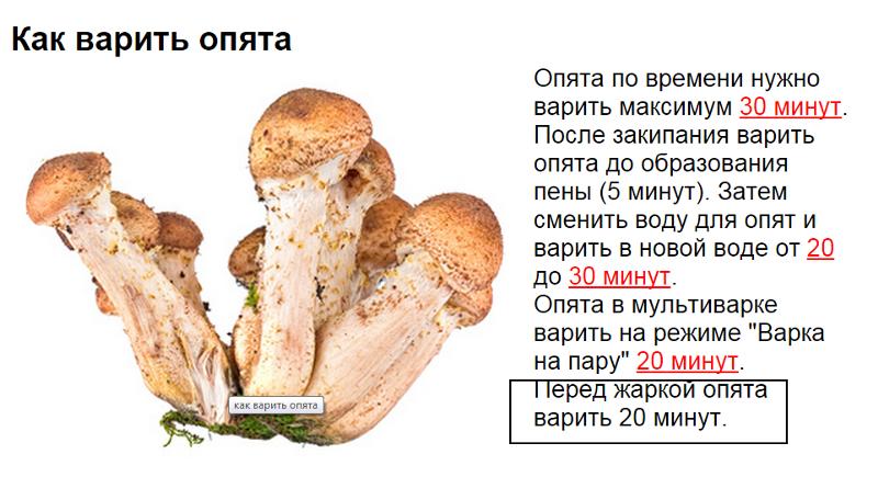 своих материалов сколько надо варить грибы перед жаркой «Мне приписали