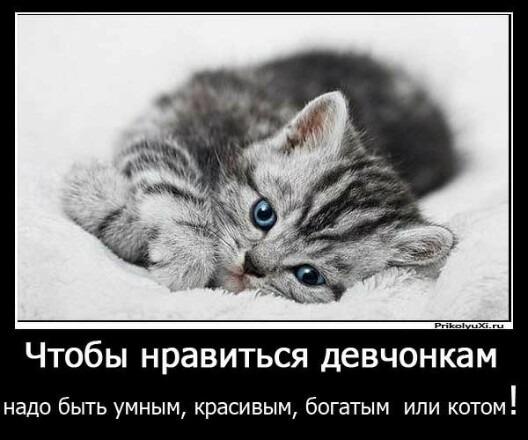 Как заморозить страницу в ВК Rusadmin