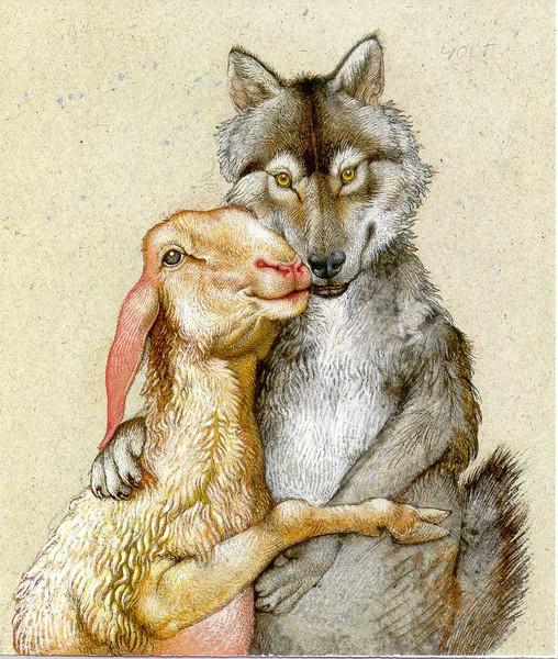 обои рождественский волк целует зайца картинки девчонками отдыхает