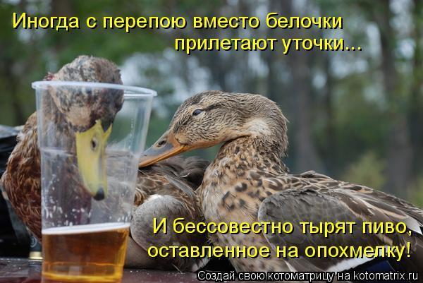 https://otvet.imgsmail.ru/download/2cd81ed33467338204ce6c02b7c88a2a_i-2222.jpg